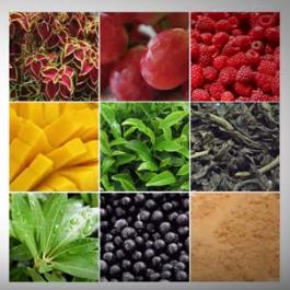 Revolyn, come si usa, ingredienti, composizione, funziona