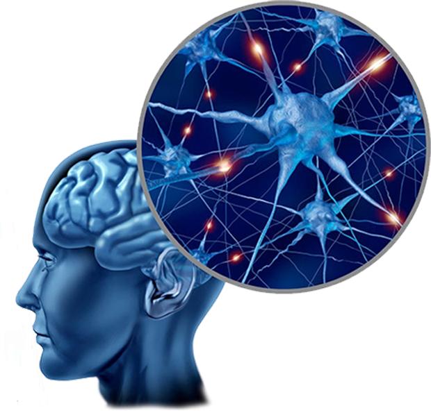 Optigen IQ, come si usa, ingredienti, composizione, funziona