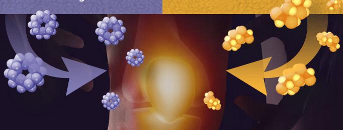 Osteoton, effetti collaterali, controindicazioni