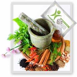 Prostaplast, come si usa, ingredienti, composizione, funziona