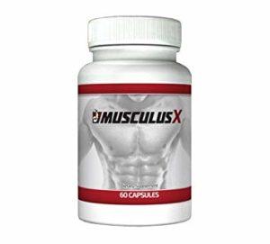 MusculusX