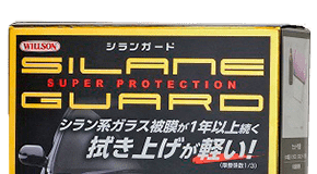 Silane Guard, prezzo, funziona, recensioni, opinioni, forum, Italia