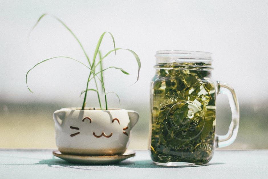 Acaiberry Green Tea, prezzo, farmacia, amazon, dove si compra