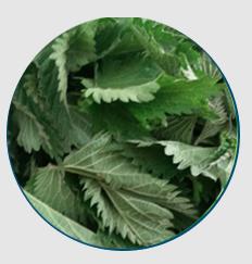 Goodnight Herbal, effetti collaterali, controindicazioni