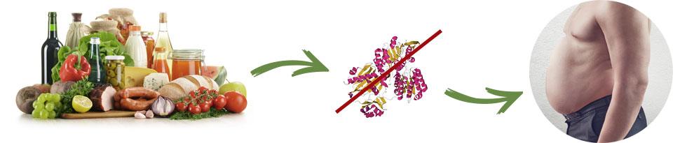 Garcinia Slim, effetti collaterali, controindicazioni