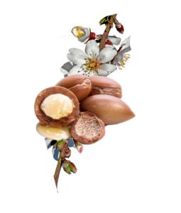 Argan Velvet, come si usa, ingredienti, composizione, funziona