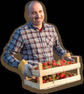 Home Berry Box, controindicazioni, effetti collaterali
