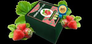 Home Berry Box, recensioni, opinioni, funziona, forum, Italia, prezzo