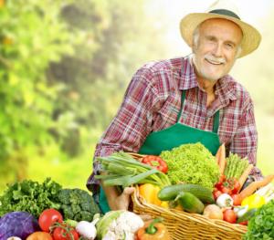 Agromax, ingredienti, come si usa, composizione, funziona