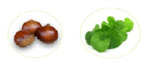 Varikos, ingredienti, composizione, funziona