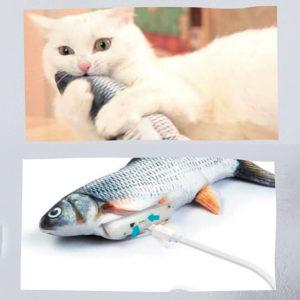 Magic Fish, opinioni, commenti, recensioni, forum